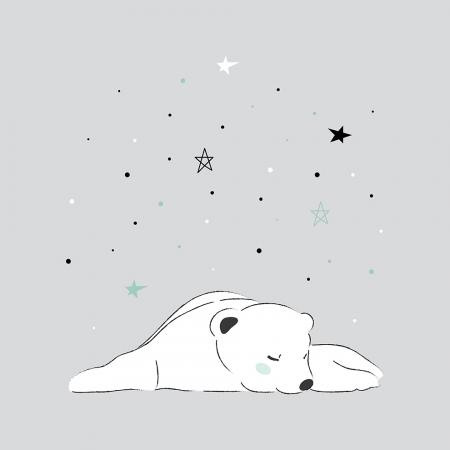 Lámina oso polar durmiendo fondo gris